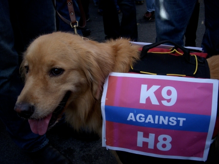 Lucy supports same-sex marriage